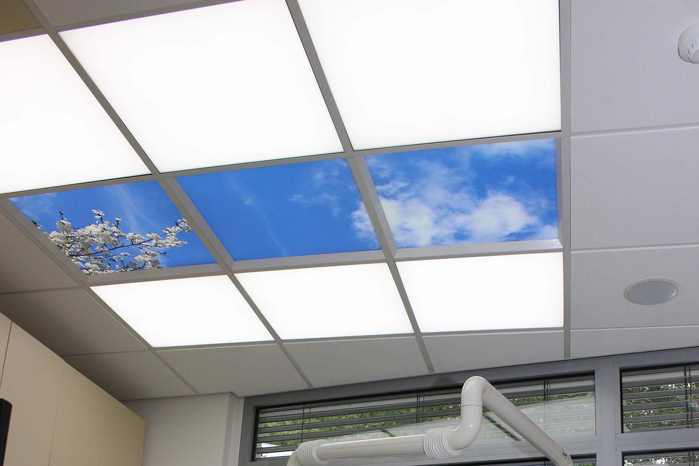 lucas verlichting werken met licht het hele jaar zonnig